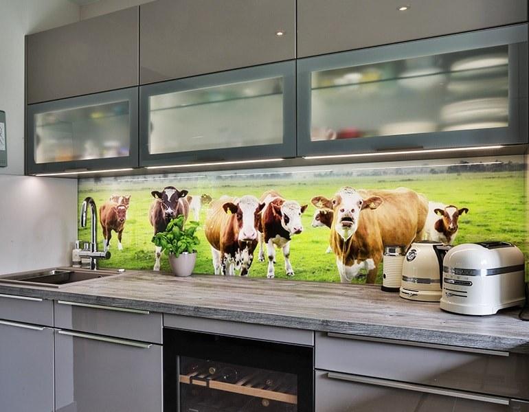 Küchenrückwand aus Glas - Glaserei Hannover